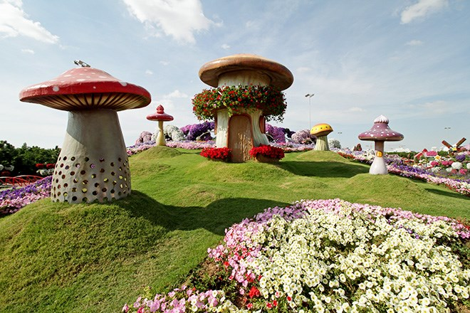 its true the dubai miracle garden feels like something straight out of alice in wonderland - Miracle Garden Dubai
