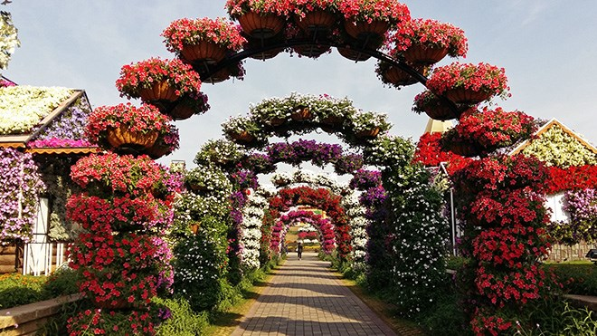 the garden showcases roughly 100 million blooming flowers all of which are cared for by a team of nearly 200 gardeners - Alice In Wonderland Garden