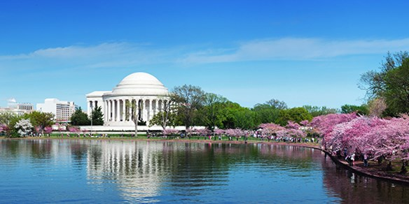 Last minute weekend travel deals from dc