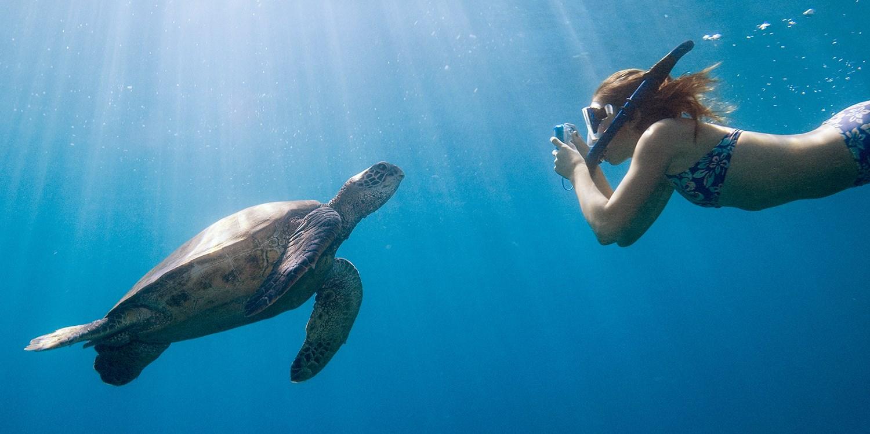 Hawaii Activity & Attractions Deals   Travelzoo