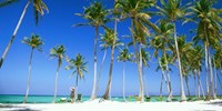 $963 -- Punta Cana: Winter All-Inclusive Trip from D.C.
