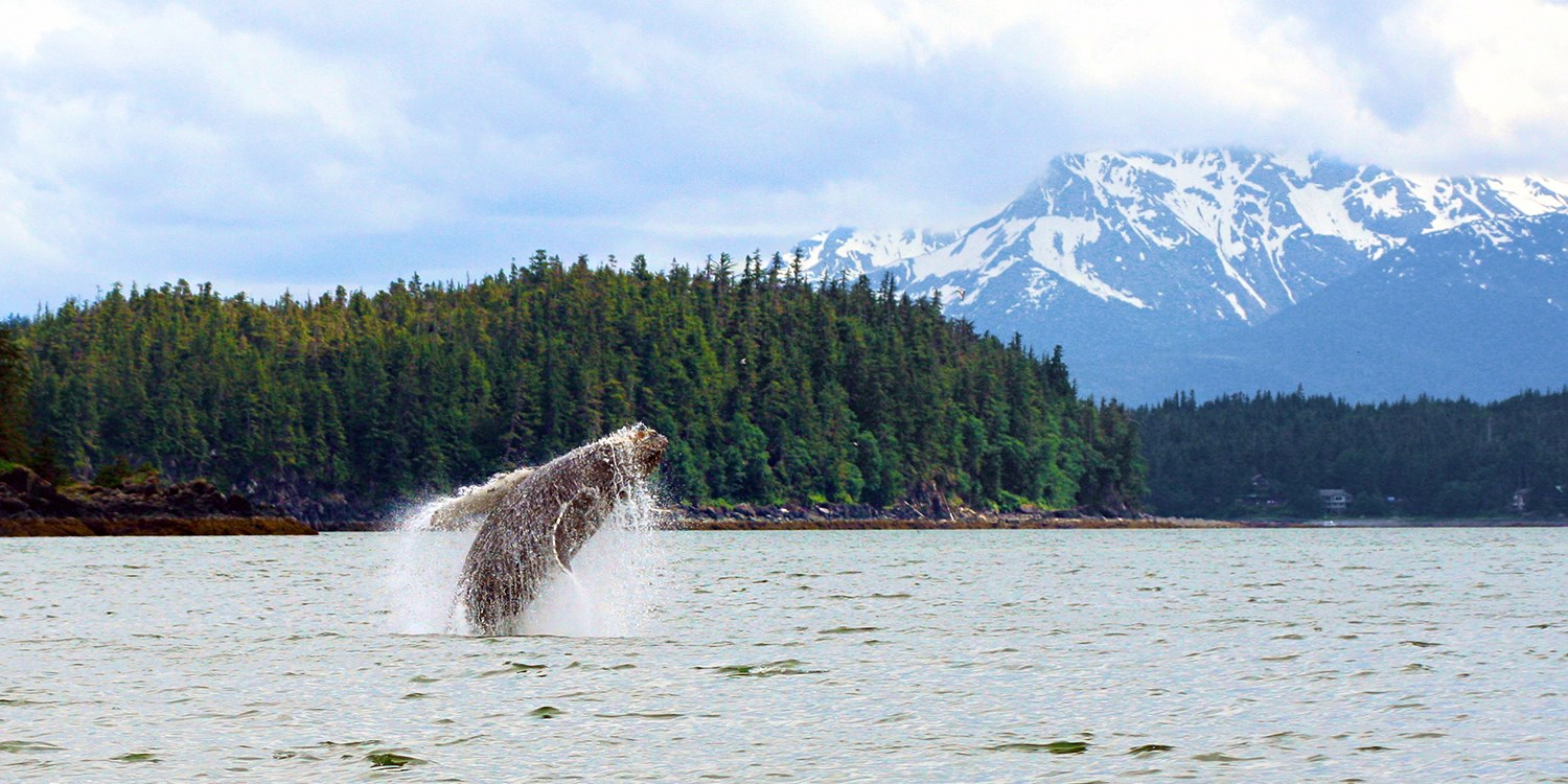 $639 & up -- 7-Night Alaska Cruises from Seattle w/Extra Perks