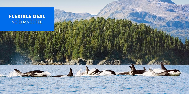 $719 -- Alaska Weeklong Spring Cruise aboard Princess