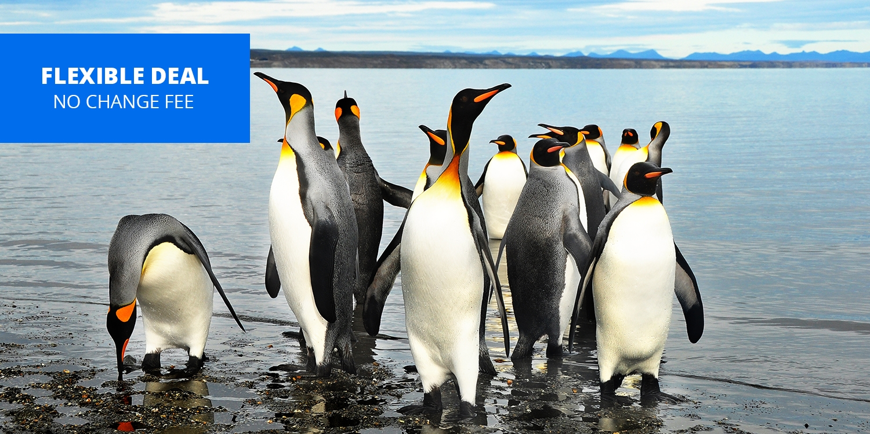 $1449 -- South America: 14-Nt. Cape Horn & Strait of Magellan Voyage