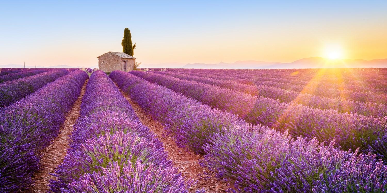 Frankreich-Reisen zum Verlieben, -60%