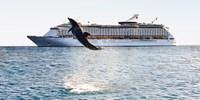 $699 -- Spend a Week at Sea: Ocean Views plus Hotel Stay