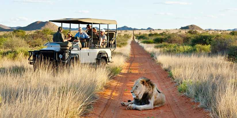These 13 Experiences In South Africa Will Make You Say Wow Travelzoo
