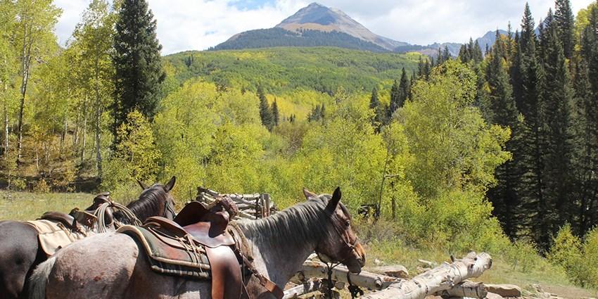 899 Colorado Ranch 3 Night Adventure W Meals Reg