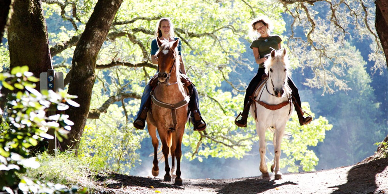$79 -- Trail Ride w/'Spectacular' Scenery, Reg. $120
