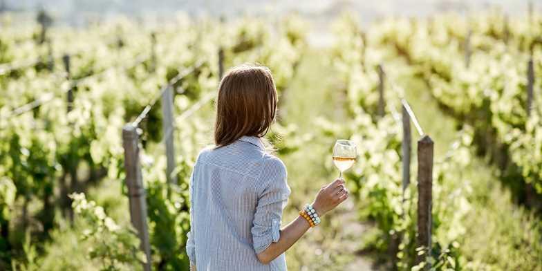 $29 – Napa Valley 2019 Wine Passport for 2: 25 Locations | Travelzoo