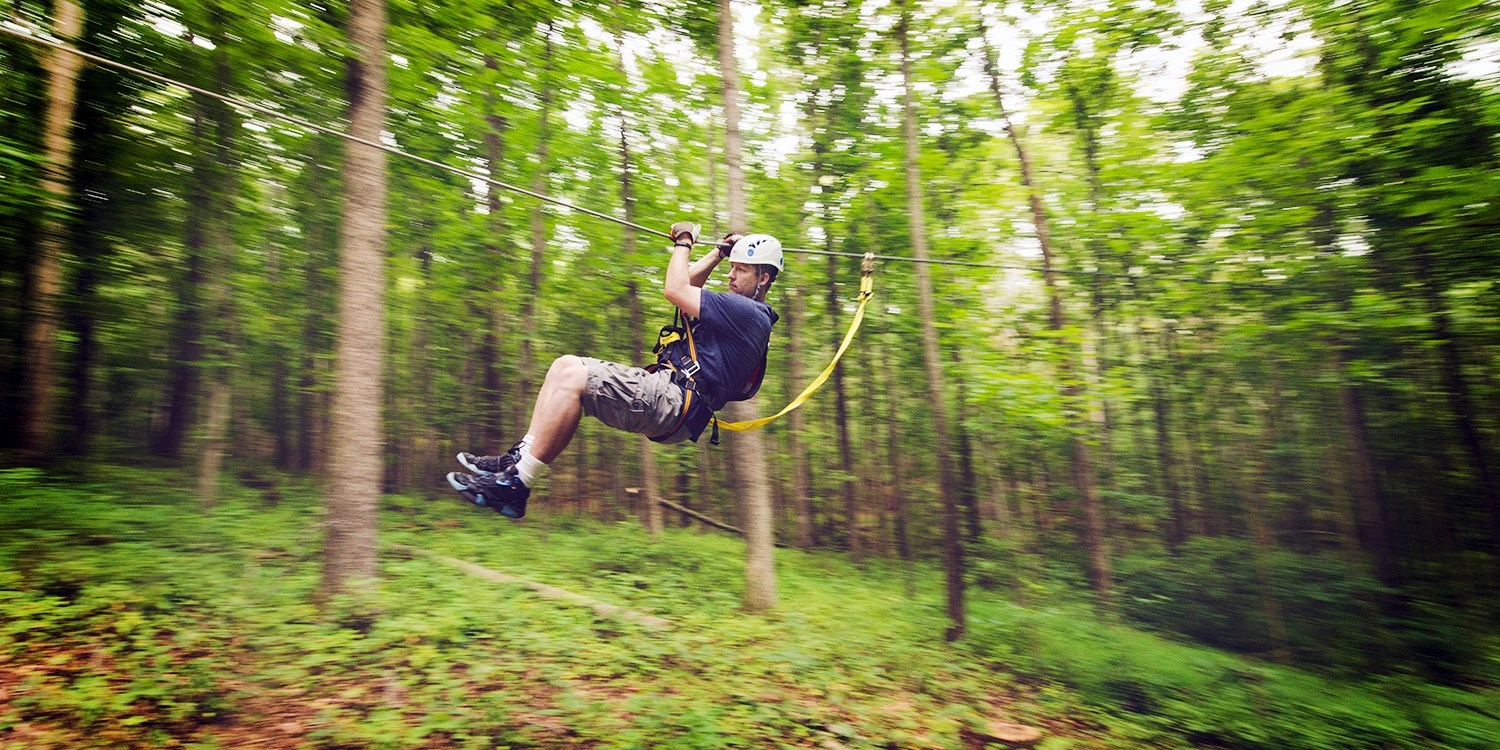 $99 -- Salamander Resort: 2016 Zip-Line Tour, Reg. $164