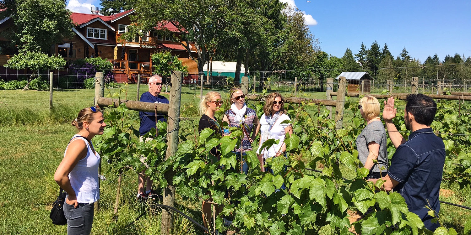 $45 -- Wine Tour from Vancouver to Fraser Valley, Reg.$91