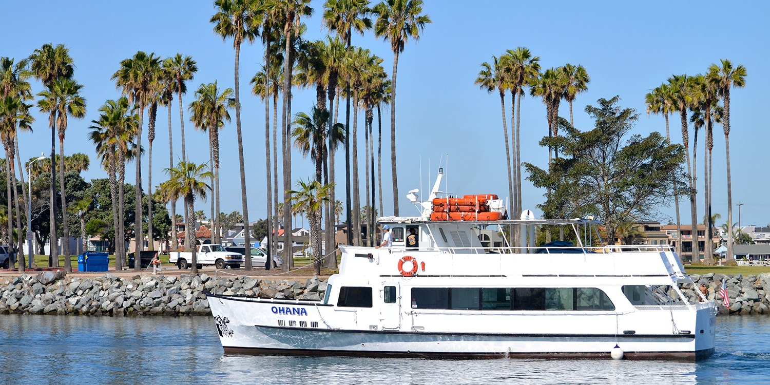 $39 -- Mission Bay: 75-Minute Cruise for 2, Half Off