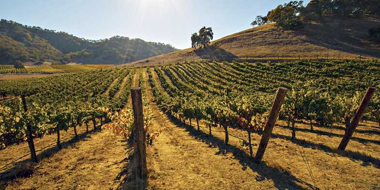 DoubleTree by Hilton Sonoma - Wine Country | Travelzoo