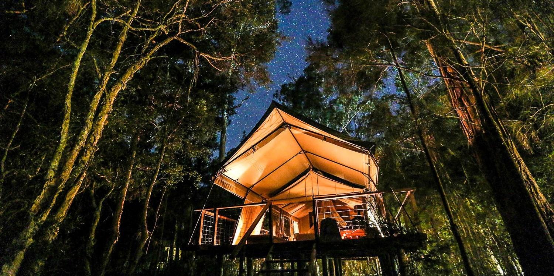 Paperbark Camp -- Woollamia