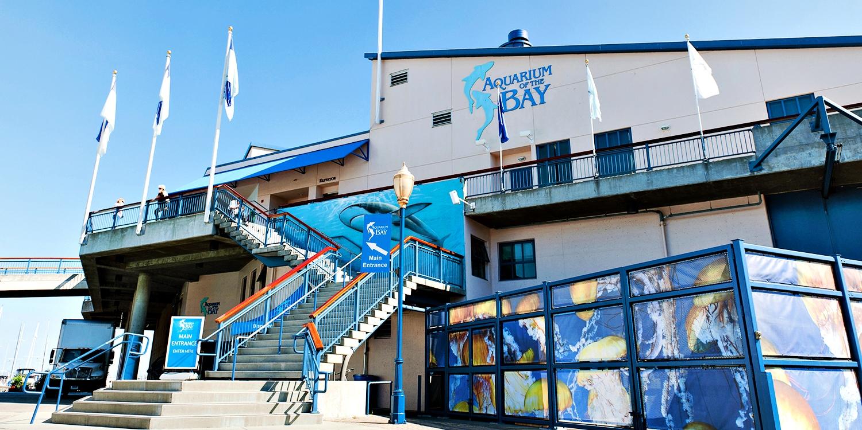 19 50 Aquarium Of The Bay Visit Any Day Of 2018 Reg 27 Travelzoo