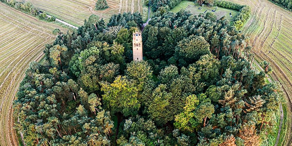 Faringdon Woodlands