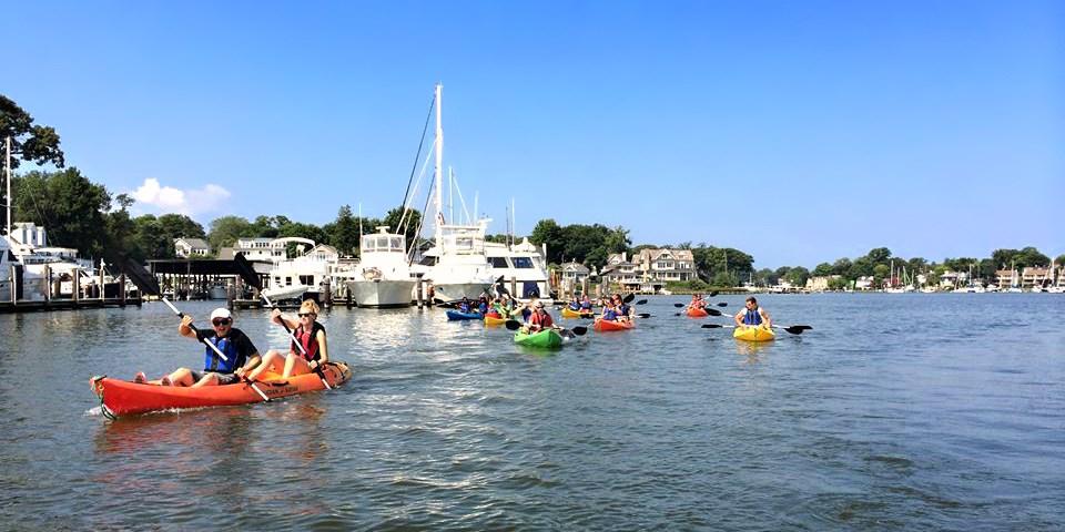 $32 -- Annapolis Harbor Guided Kayak Tour for 1, Reg. $65