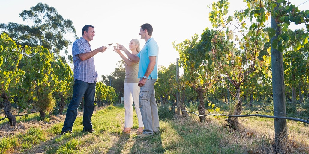 £29 -- Sussex Vineyard Tour, Tastings & Lunch for 2, 63% Off