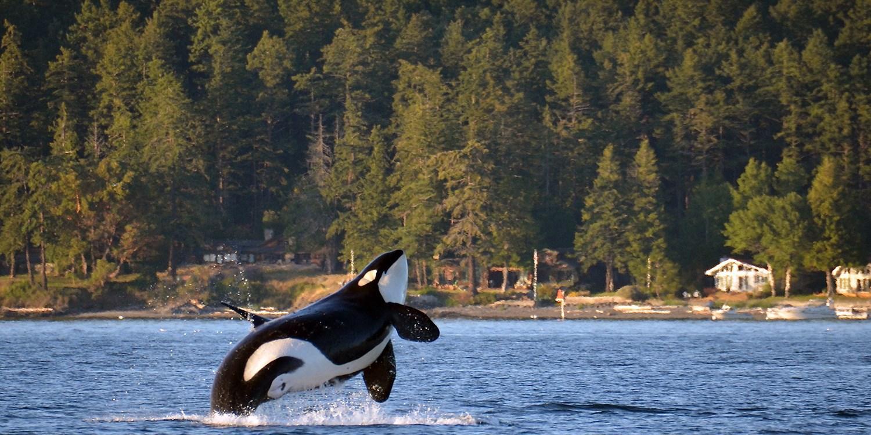 The Orcas Hotel -- Orcas Island, WA