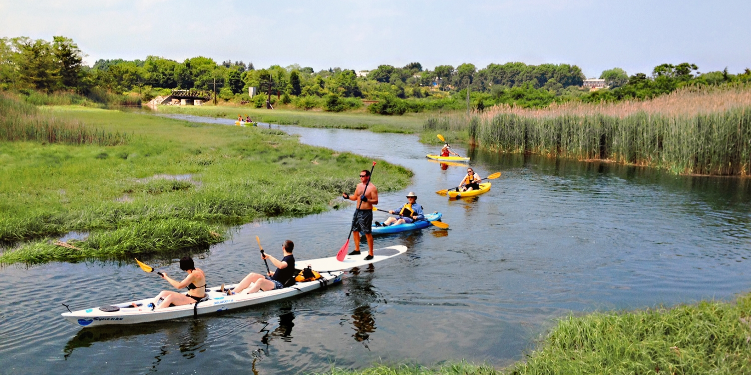 $35 & up -- Cape Cod Kayak Tours, Save up to 60%
