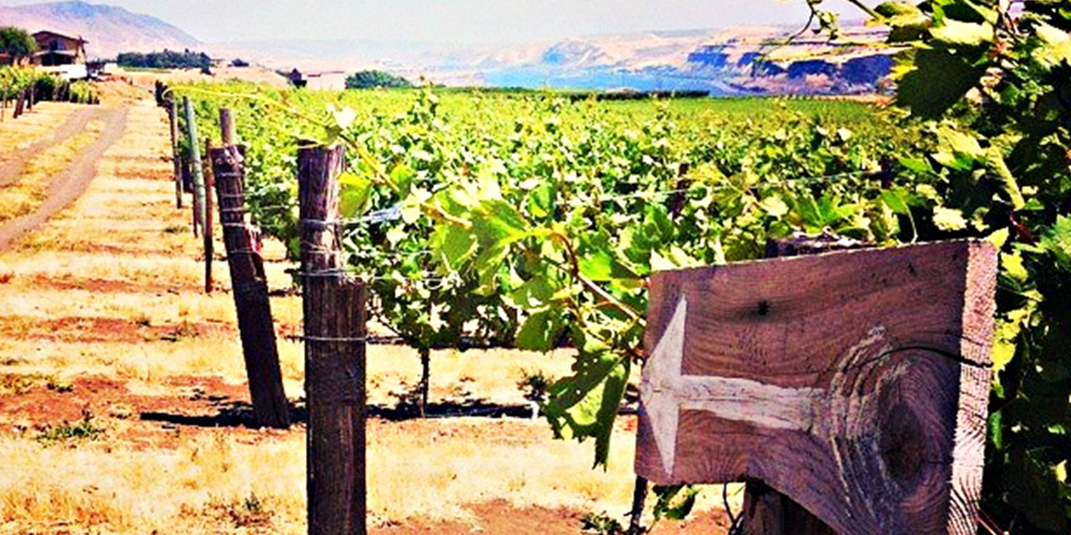 $29 -- Washington Wine Passport for 2: Visit 50+ Locations