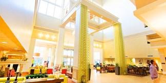 hilton garden inn dallas market center - Hilton Garden Inn Dallas
