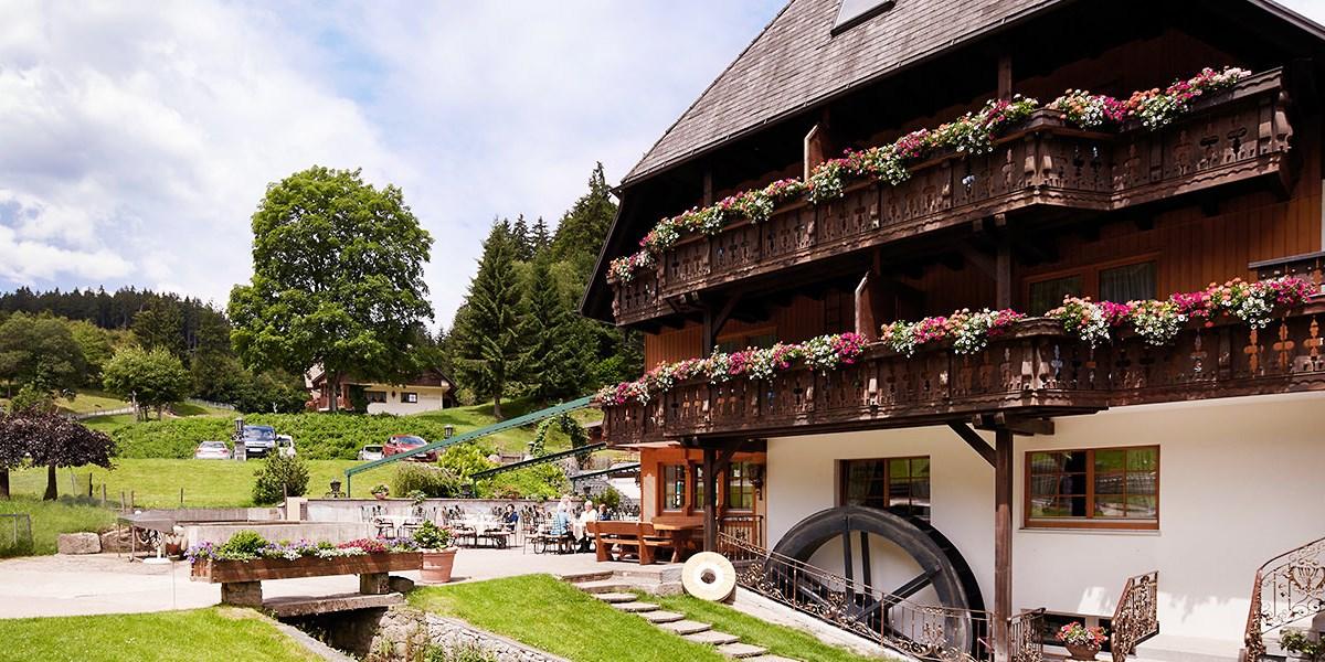 Hotel Tannenmühle -- Grafenhausen