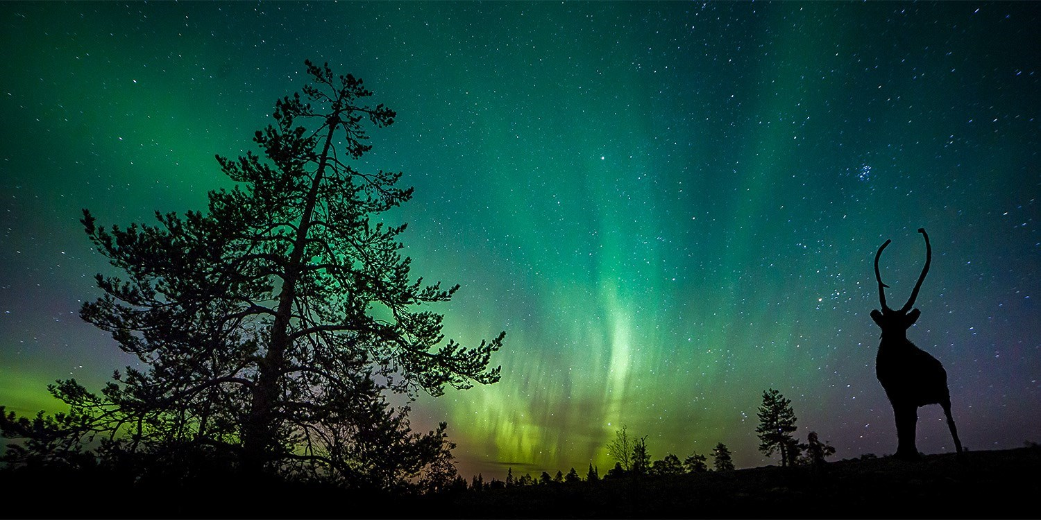 $143 – Whitehorse Hotel Stay during Aurora Borealis, Reg. $222 -- Whitehorse, Canada