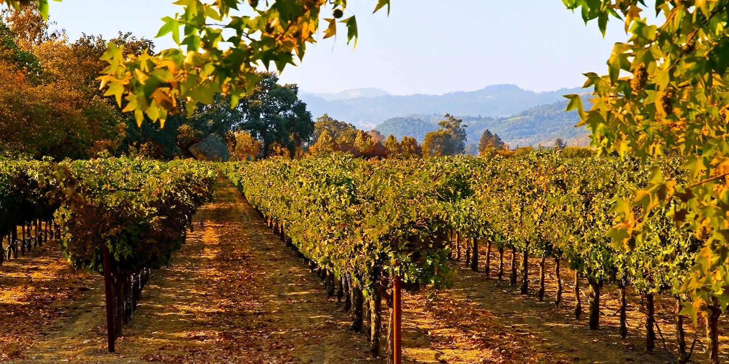 £100-£145 – Napa Valley Stay incl. Weekends, 55% Off -- Napa, CA