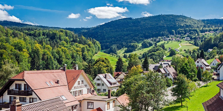 99€ – Schwarzwald: Sommerurlaub mit Dinner und Wein, -50% -- Bad Herrenalb