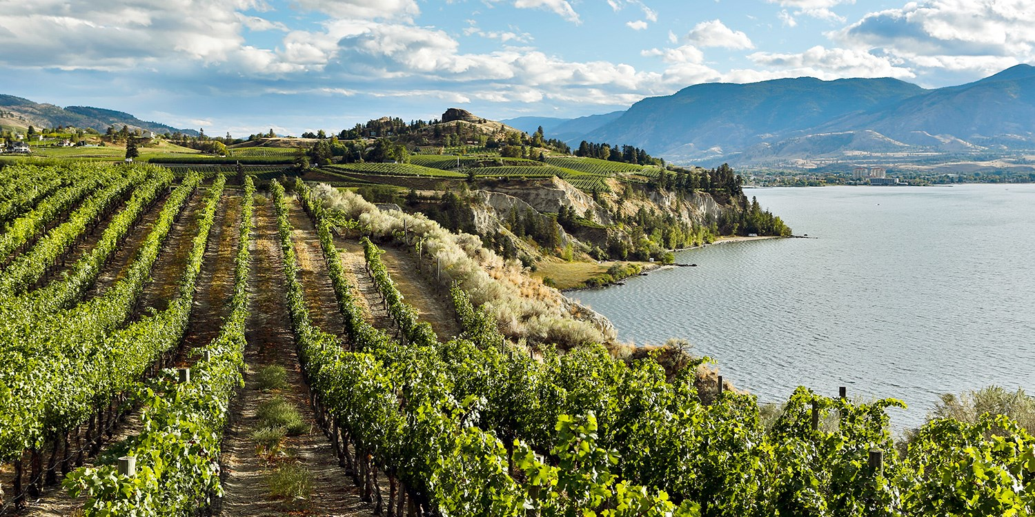 $102 – Okanagan: New Hotel in Wine Country w/Extras, Reg. $154 -- Oliver, Canada